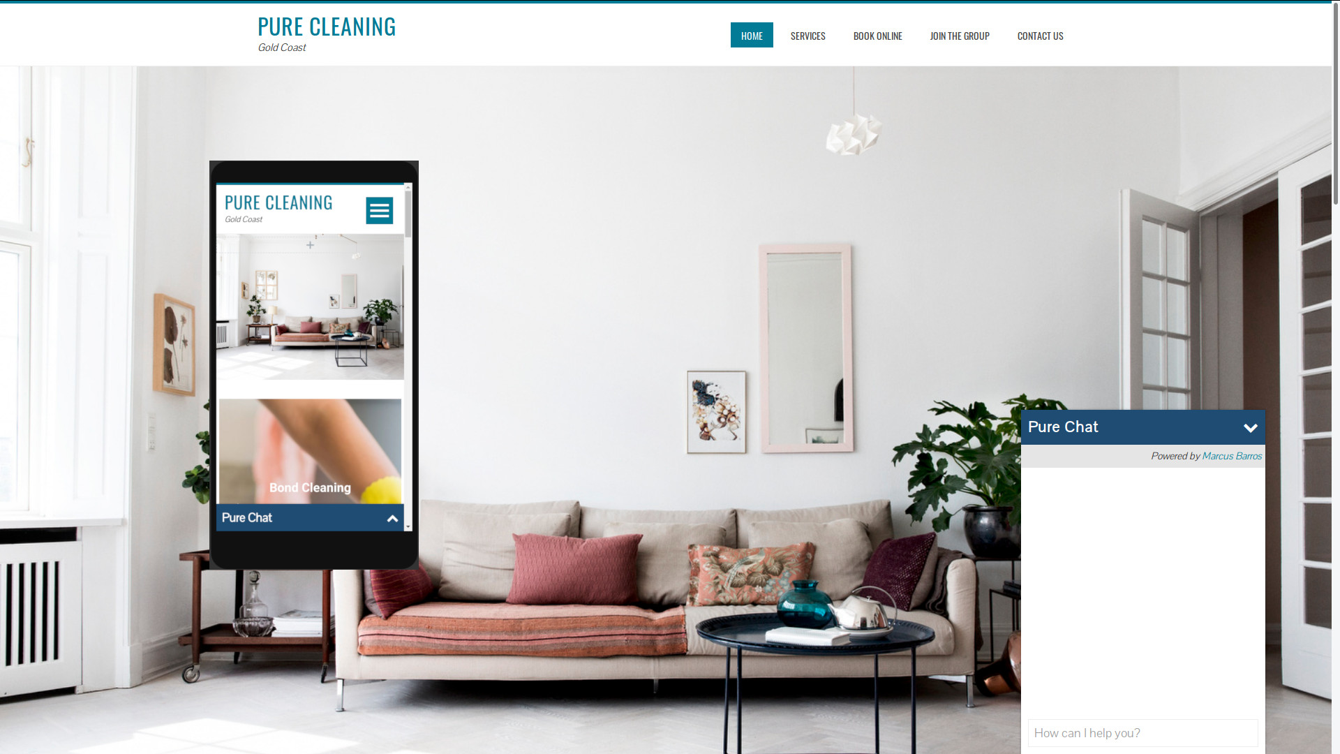 Pure Cleaning Web Page